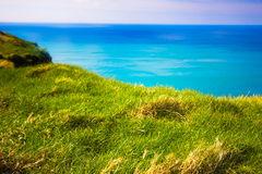 ocean field